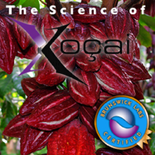 The Science of Xocai chocolate Health Claims In Venice Florida