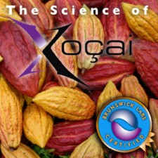 The Science of Xocai chocolate Health Claims In Somerset West Western Cape