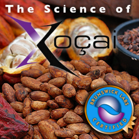 The Science of Xocai chocolate Health Claims In Wesley Chapel Florida
