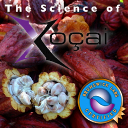 The Science of Xocai chocolate Health Claims In Paris Ontario. CANADA