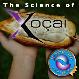 The Science of Xocai chocolate Health Claims In Santa Monica CA