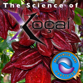The Science of Xocai chocolate Health Claims In San Ramon CA
