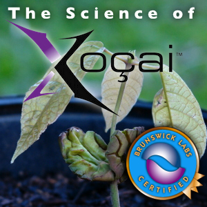 The Science of Xocai chocolate Health Claims In bellingham washington