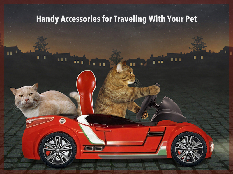 Nifty Gadgets For Traveling With Pets