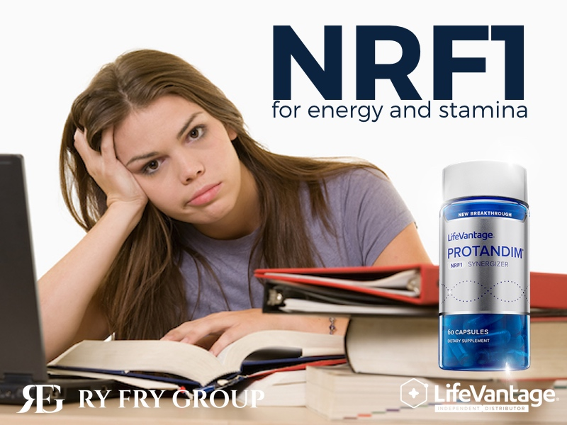 LifeVantage Protandim for stamina RyFry Group